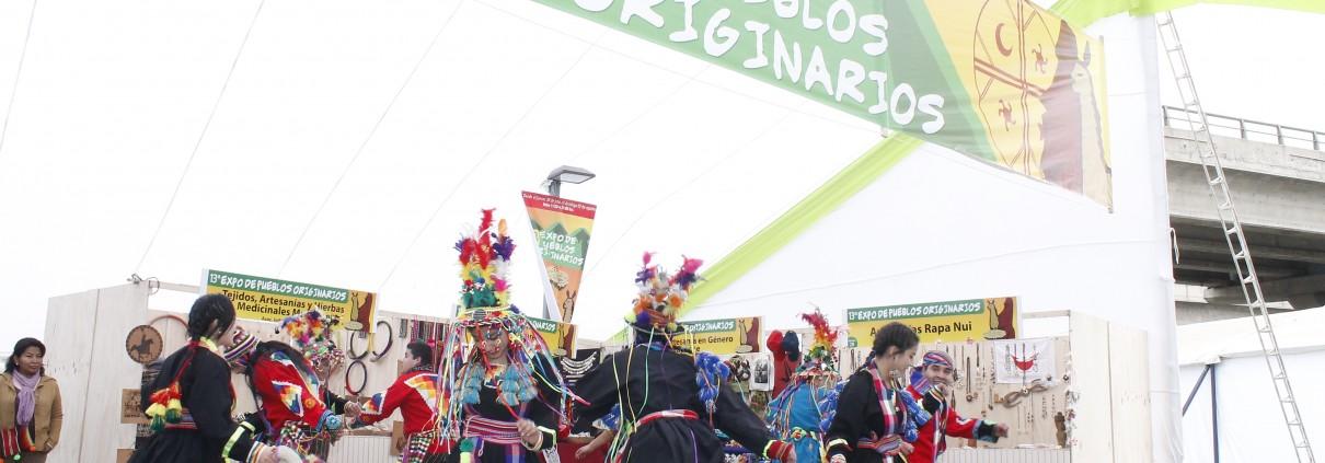 Más de 12 mil personas visitaron Expo de Pueblos Originarios de Peñalolén