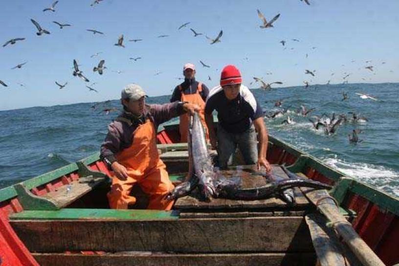 """Pescadores artesanales frente a Ley de Pesca y éxito de sector industrial: """"Hay una política destinada a hacernos desaparecer"""""""