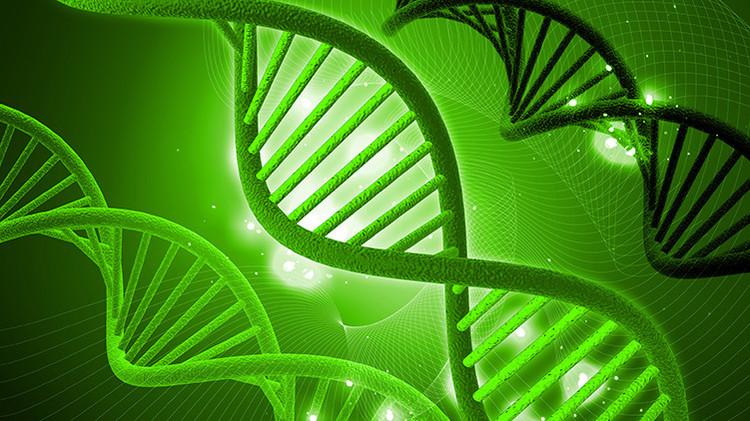 En nuestro cuerpo podría haber ADN 'atrapado' de otros seres humanos
