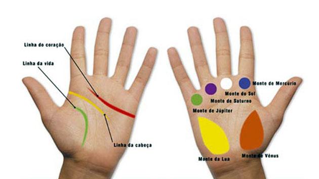 El destino al alcance de la mano: Líneas y sus significados