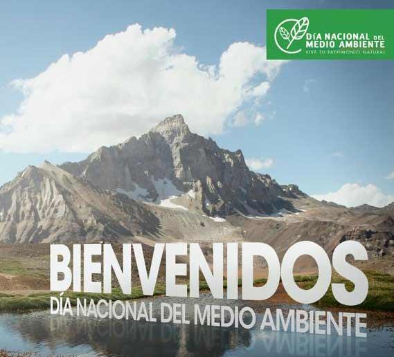 Día Nacional del Medio Ambiente: Recorre nuestras áreas protegidas a lo largo de todo Chile gratis