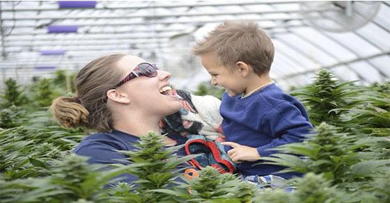 Niño, le dieron solo 48 horas de vida, ahora está libre de cáncer después de tomar Aceite de Cannabis