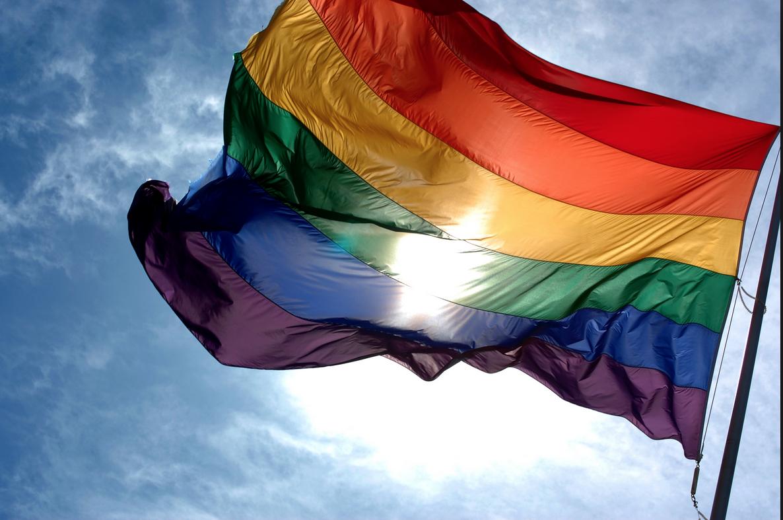 Gran paso para la diversidad: Senado llevará a votación proyecto de igualdad de género