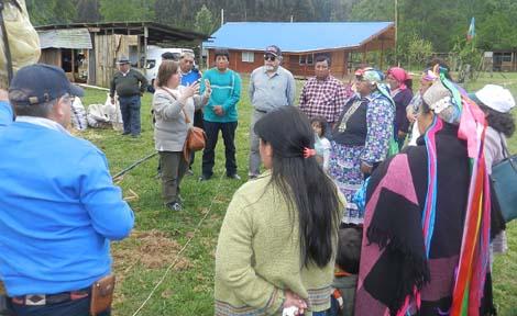 Machis recuperan y valorizan plantas nativas y hierbas de uso medicinal ancestral mapuche