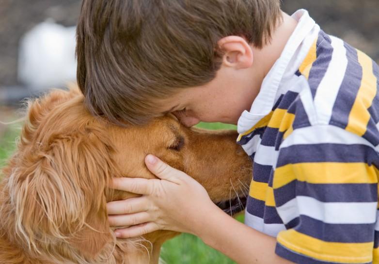 Estudio científico confirma que los perros reconocen las emociones humanas