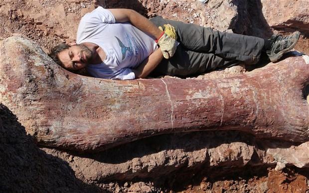 La especie de titanosaurio encontrada en Argentina es la más grande de la historia