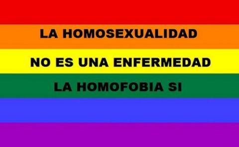 Calendario Escolar: 12 de 15 regiones incluyeron el Día contra la Homofobia