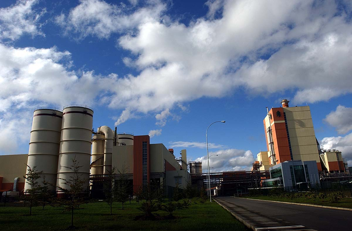 Derrame en CELCO Valdivia: Empresa pidió más plazo en investigación que lleva dos años