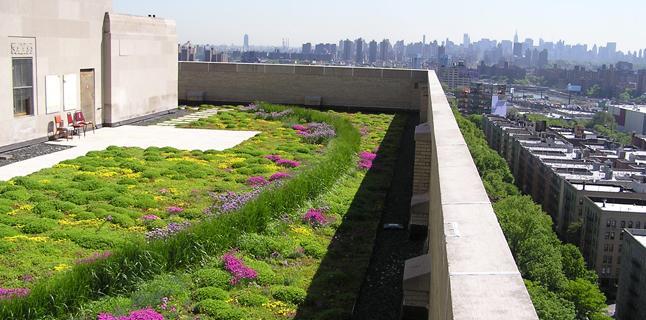 Naturbanización: el nuevo concepto que salvará a las grandes ciudades y sus habitantes