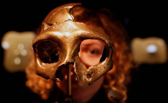 La fusión humano y neandertal ocurrió decenas de miles de años antes de lo pensado