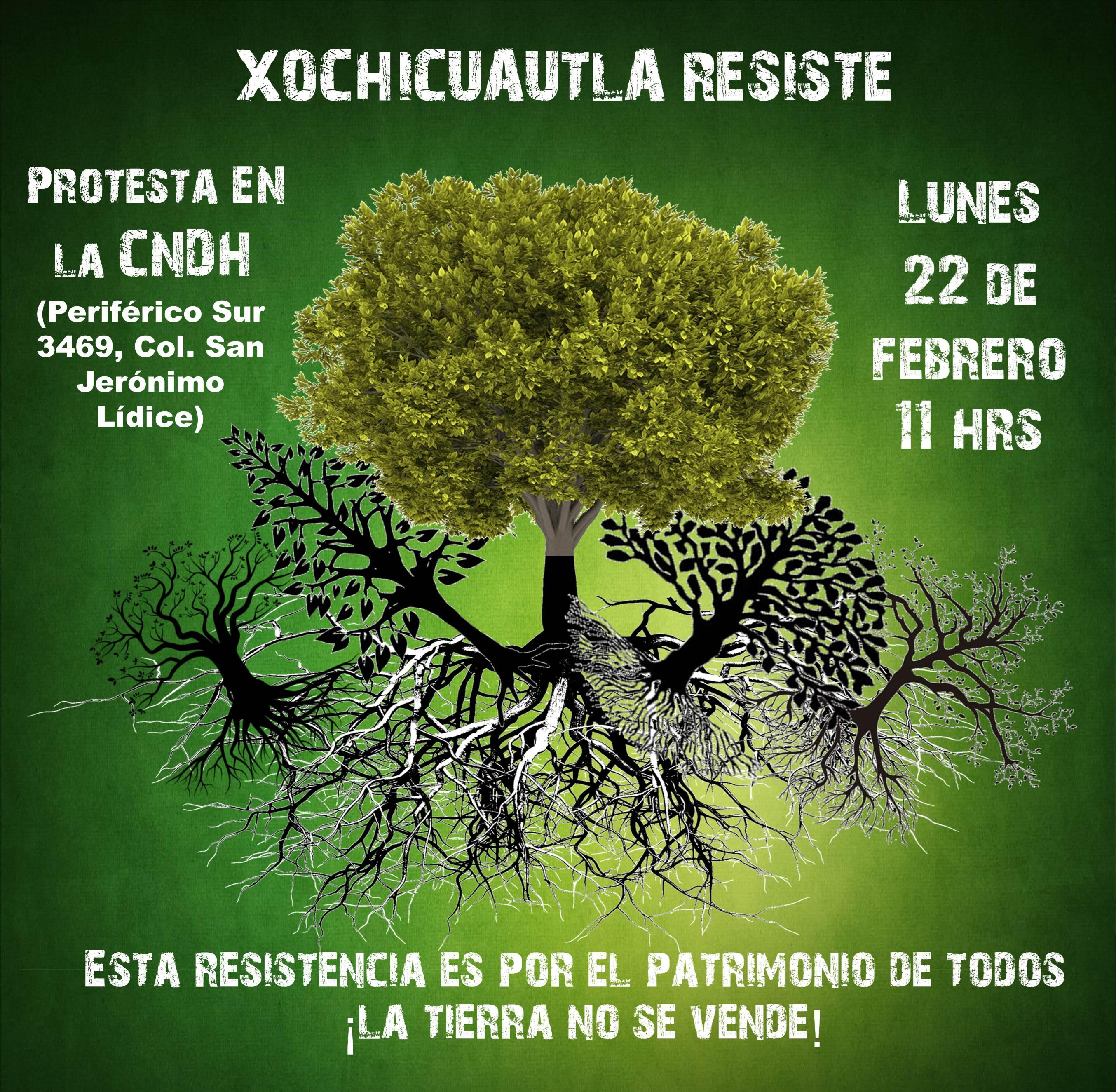 Convocan comunidades indígenas a plantón frente a la CNDH