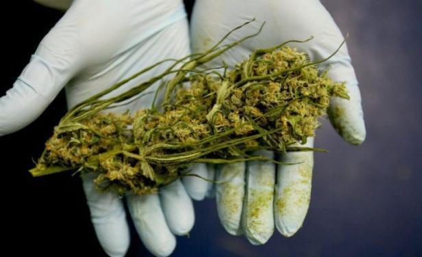 Macro estudio concluye que 'guerra contra las drogas' ha sido inútil y perjudicial para la sociedad