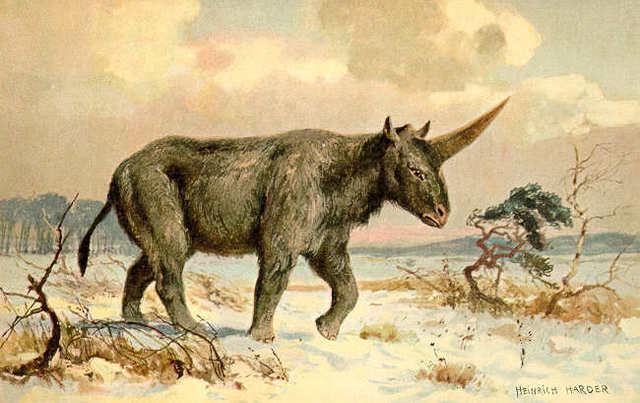 Así fue el verdadero «unicornio» que coexistió con los humanos
