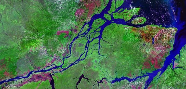 Descubren un enorme arrecife de coral en la boca del río Amazonas