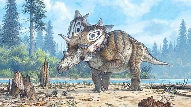 Descubrimiento de nueva especie de dinosaurio sorprende al mundo