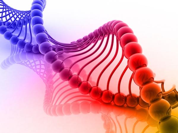 Científicos publican propuesta para intentar recrear el ADN humano en laboratorio