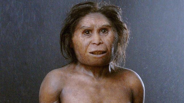 """Nuevos fósiles del """"hobbit"""" de la isla de Flores revolucionarían nuestro conocimiento de la evolución humana"""