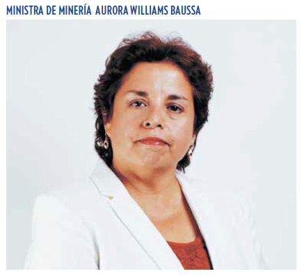 ministra-mineria-williams