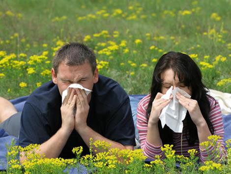 ISP advierte sobre reacciones adversas de medicamentos antialérgicos