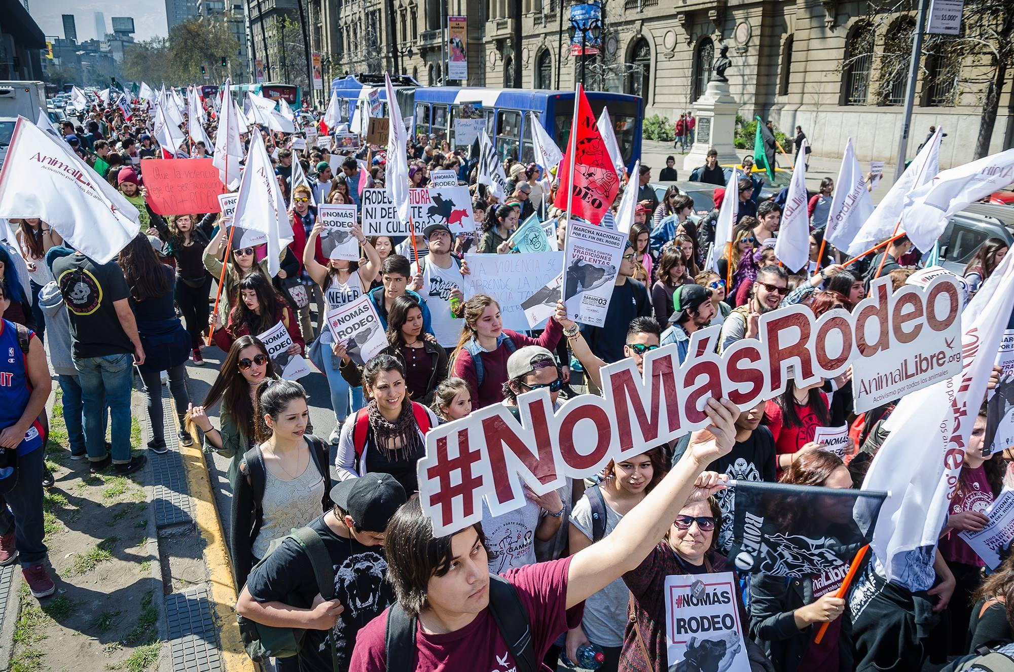 Convocan a «banderazo» para exigir el fin del rodeo en Santiago