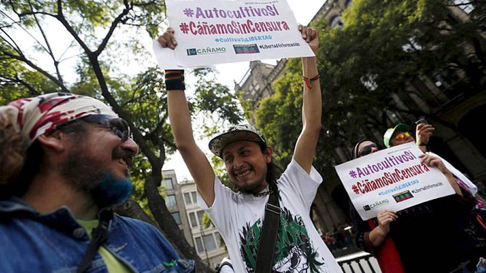 Congreso mexicano debate en torno a proyecto de ley para legalizar la marihuana para uso medicinal