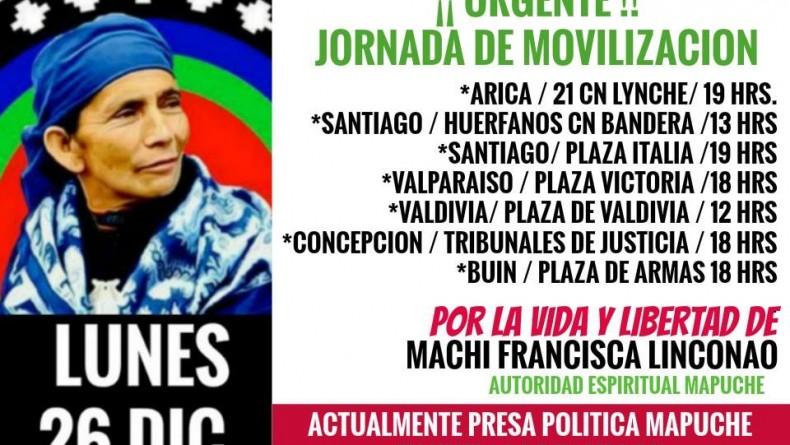 Machi Francisca Linconao cumple 4 días en huelga de hambre y Chile se moviliza por su libertad