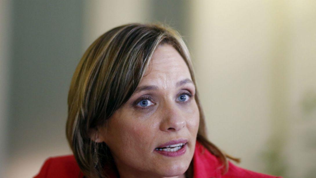 Proyecto de aborto en tres causales dependerá de los votos en sala de la DC