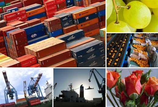 Exportaciones No Cobre protagonizan los envíos de Chile en 2016