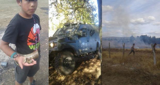 Comunidad de Temucuicui denuncia violencia por parte del GOPE en una nueva irrupción a la zona