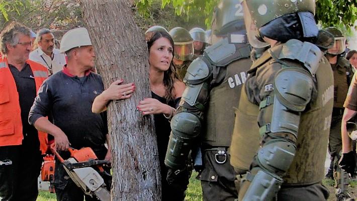 De la indignación vecinal a un supuesto «montaje de la UDI»: Lo que desenterró una tala de árboles en Recoleta