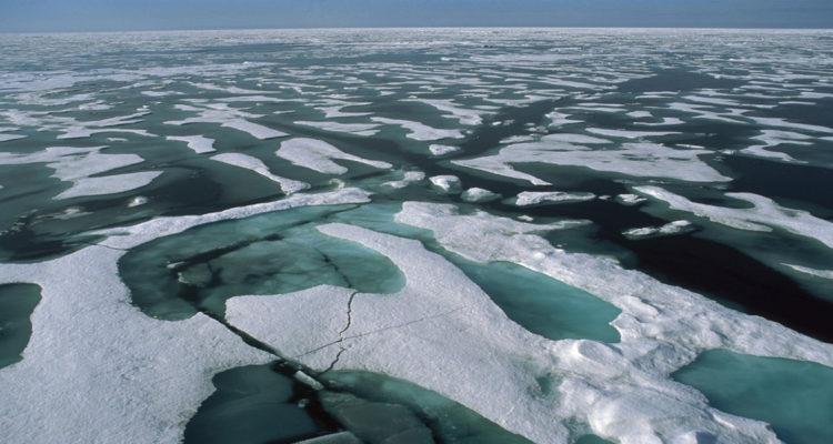 Como cada año, esta temporada los hielos polares vuelven a registrar récords cada vez más bajos