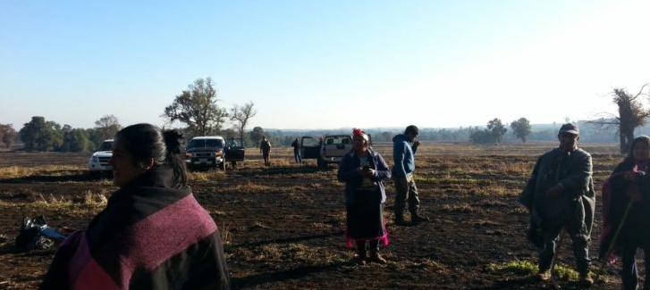 Comunidad mapuche reivindica con nueva toma derecho ancestral sobre fundo