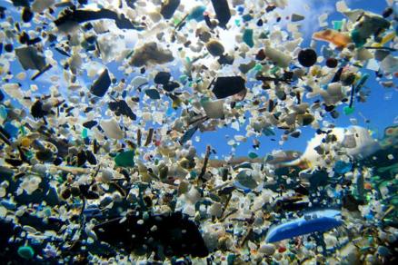 México asume la batalla contra la contaminación por plásticos en sus mares