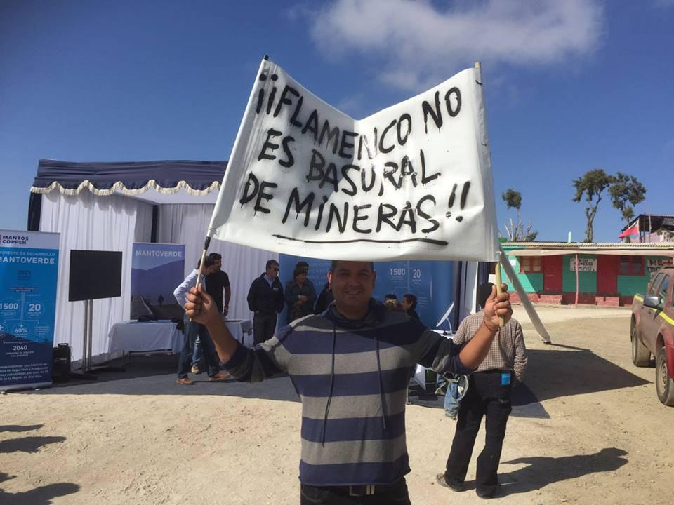 Flamenco se levanta: Denuncian a minera por destrucción del ecosistema en caleta de Atacama