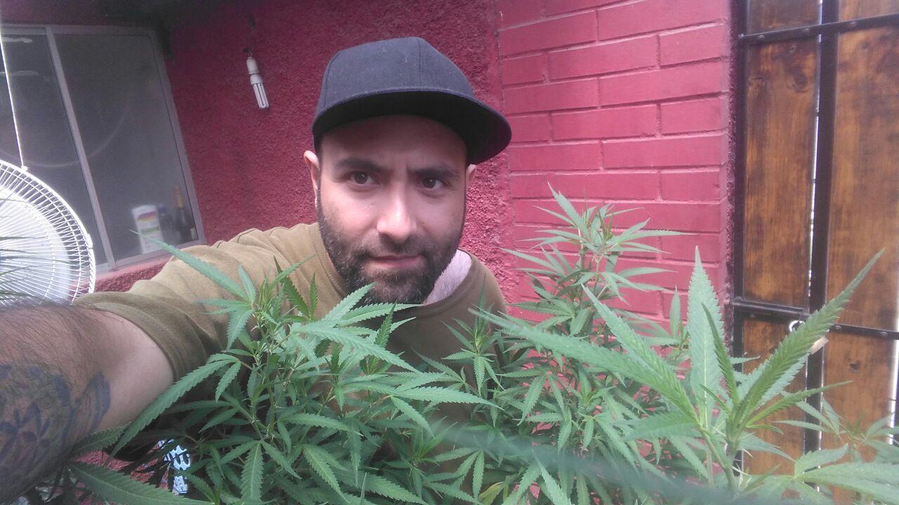 Carabinero dado de baja por consumo de cannabis medicinal: «Cuando la probé se me olvidó el dolor, fue un descanso maravilloso»