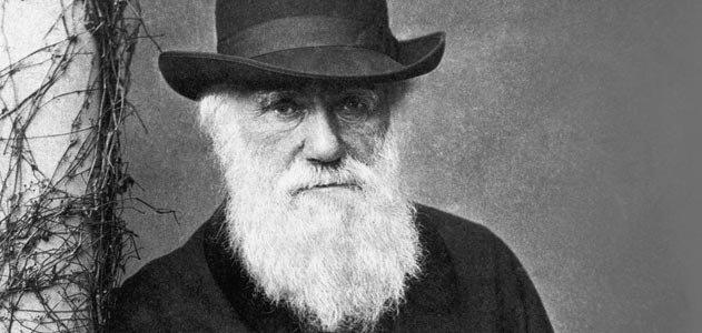 Fósiles terrestres más antiguos descubiertos sustentan teoría de Darwin del origen de la vida en la Tierra