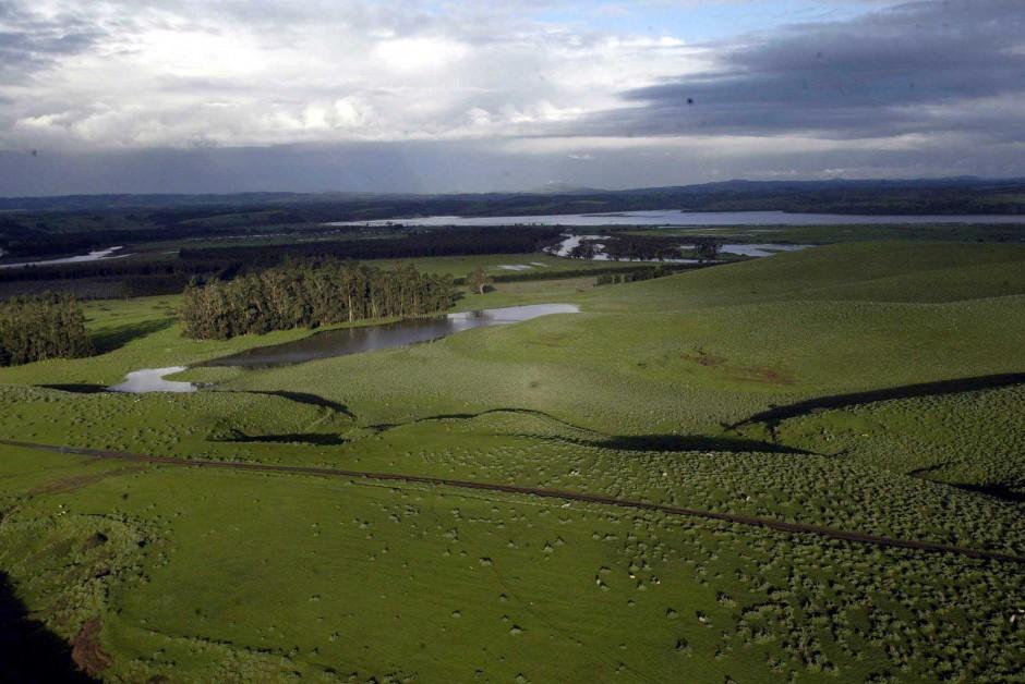 Nuevo Servicio de Biodiversidad: incluyen norma para la protección de humedales