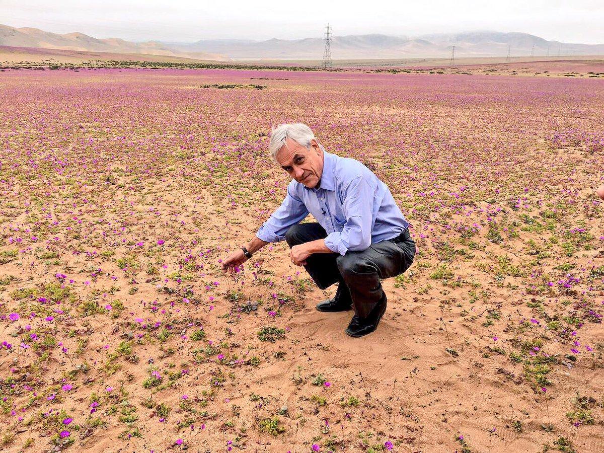 Los «tiempos mejores»: El prontuario medioambiental de Piñera