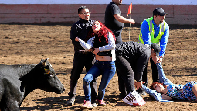 Animalistas interrumpen rodeo en Padre Hurtado y desatan la ira de José Antonio Kast