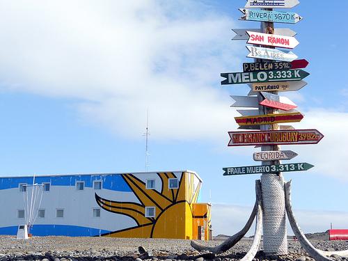 Antártida: Uruguay patentará hallazgo científico con potencial uso farmacéutico