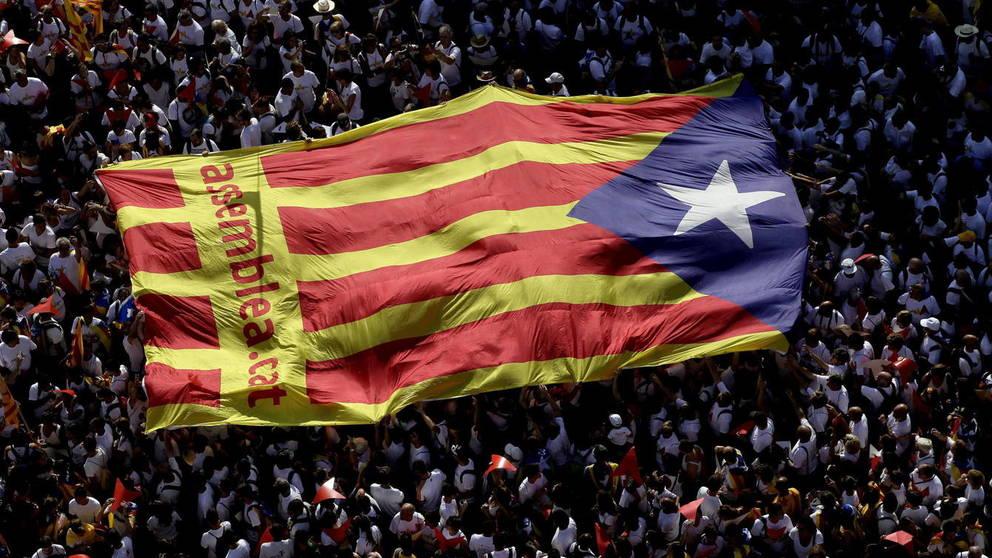 Cataluña: ex vicepresidente y consejeros acatan el artículo 155 y exigen su libertad