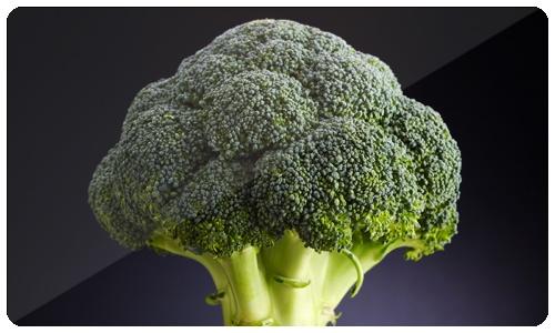 Las mejores recetas con brócoli y calabaza para encantar y disfrutar