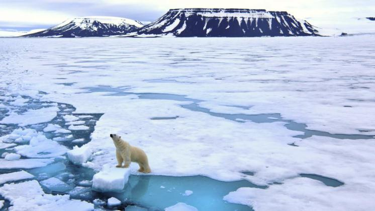 Informe anual confirma dramáticos y acelerados cambios ambientales en el Ártico