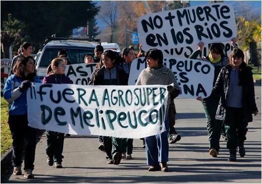 Comunidades de Melipeuco en alerta por reapertura de planta acuícola
