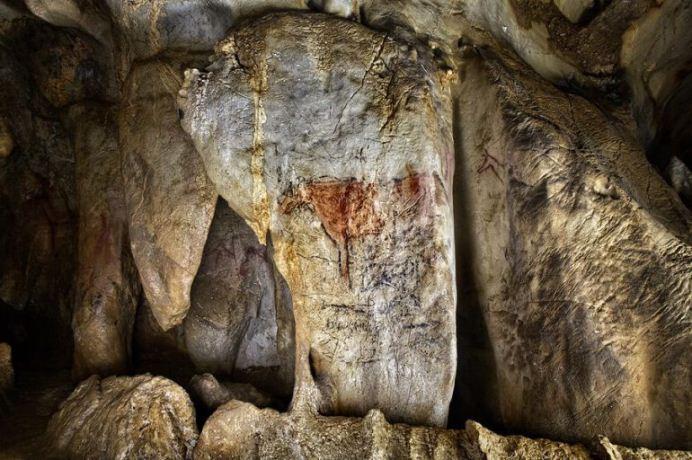 Hallazgo de pinturas rupestres y conchas decoradas revela que los Neandertal también eran artistas
