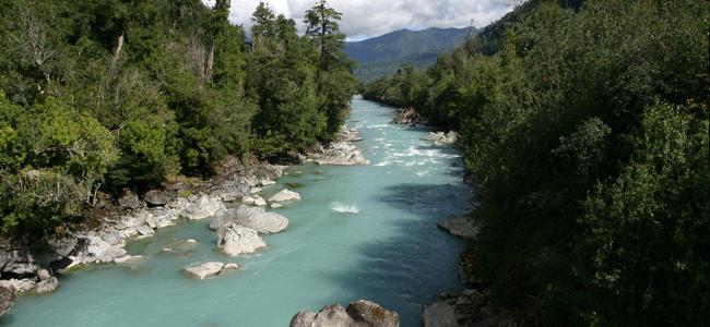Presencia chilena en primer Foro Alternativo Mundial del Agua en Brasil