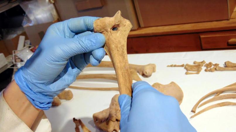 Tomografías revelan cómo convivían pueblos originarios del norte de Chile con los incas