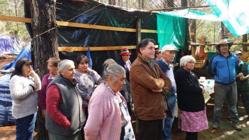 Curanilahue: La lucha de los campesinos que acusan a Forestales y al Estado de robarles sus tierras