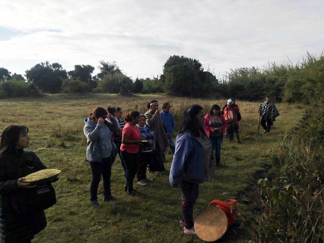 Comunidades mapuche de Imperial se movilizan en defensa de la laguna Rengalil