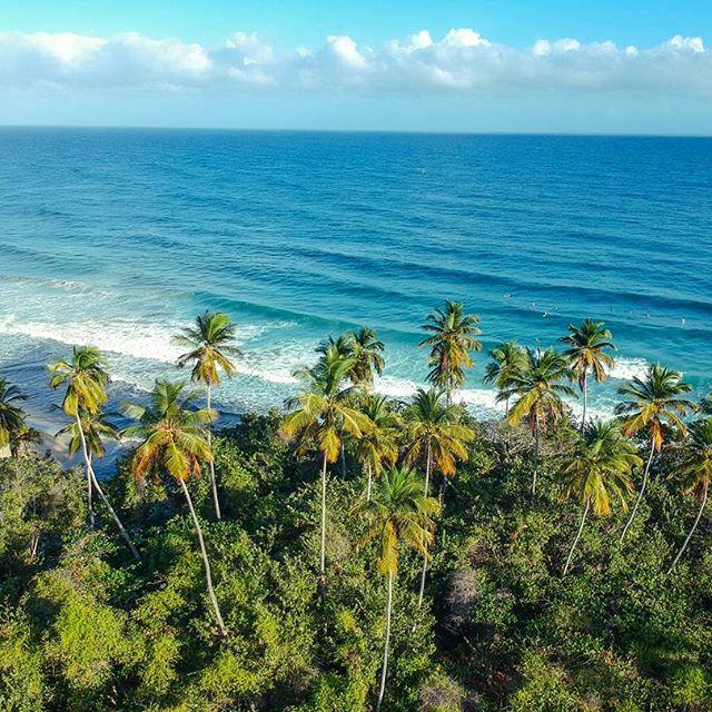 Venezuela playas y olas (fotos)